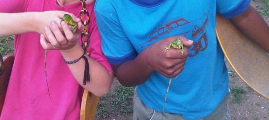 His n hers baby iguanas, Panama